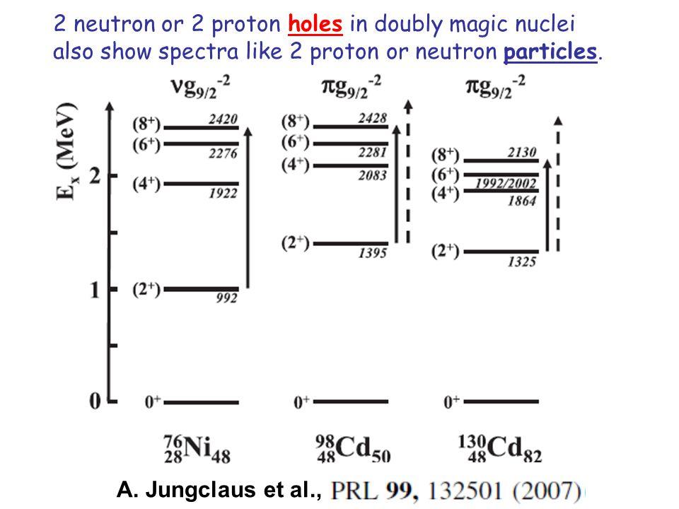 A. Jungclaus et al., 2 neutron or 2 proton holes in doubly magic nuclei also show spectra like 2 proton or neutron particles.