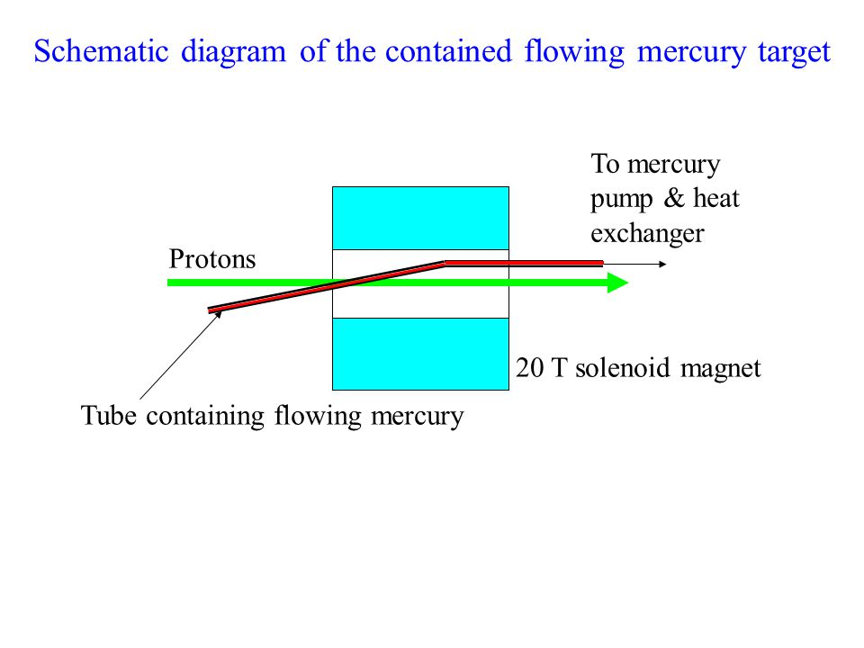 To mercury pump & heat exchanger Protons Tube containing flowing mercury 20 T solenoid magnet Schematic diagram of the contained flowing mercury target