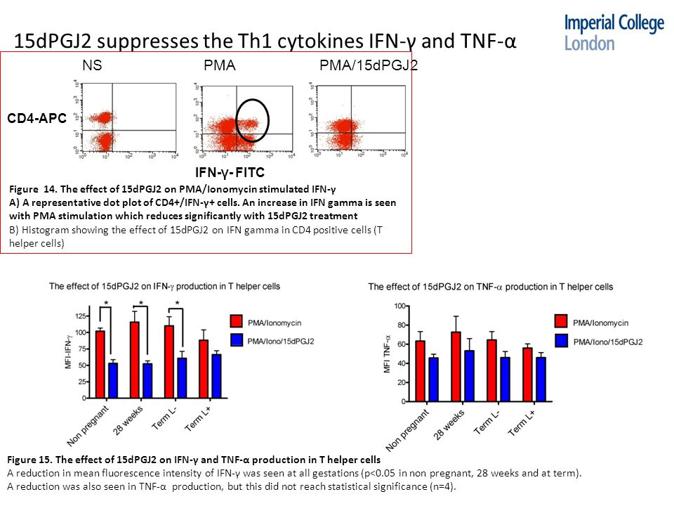 15dPGJ2 suppresses the Th1 cytokines IFN-γ and TNF-α Figure 14.