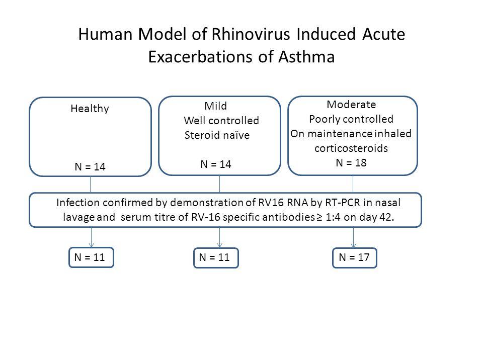 Th2 cytokines induced by RV in asthma IL-13IL- 4