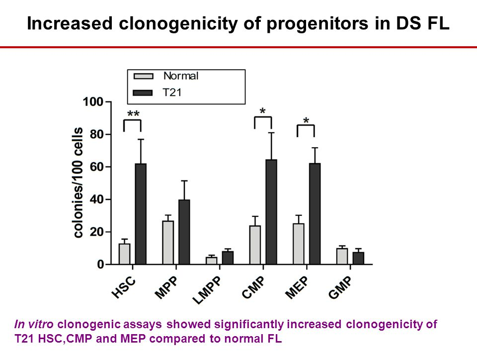 Increased clonogenicity of progenitors in DS FL In vitro clonogenic assays showed significantly increased clonogenicity of T21 HSC,CMP and MEP compared to normal FL