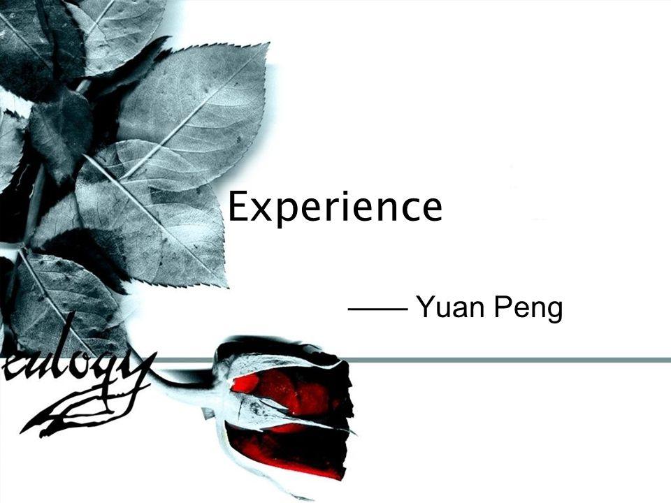 Experience —— Yuan Peng