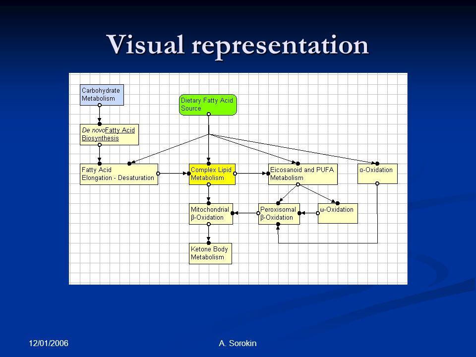 12/01/2006 A. Sorokin Visual representation
