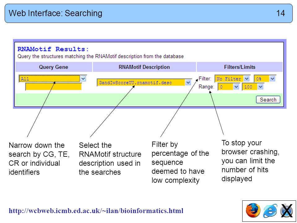 http://wcbweb.icmb.ed.ac.uk/~ilan/bioinformatics.html To stop your browser crashing, you can limit the number of hits displayed Filter by percentage of the sequence deemed to have low complexity Select the RNAMotif structure description used in the searches Narrow down the search by CG, TE, CR or individual identifiers X Web Interface: Searching14