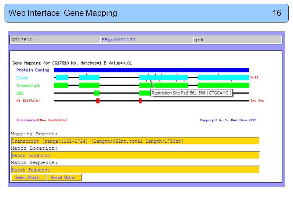 Web Interface: Gene Mapping16
