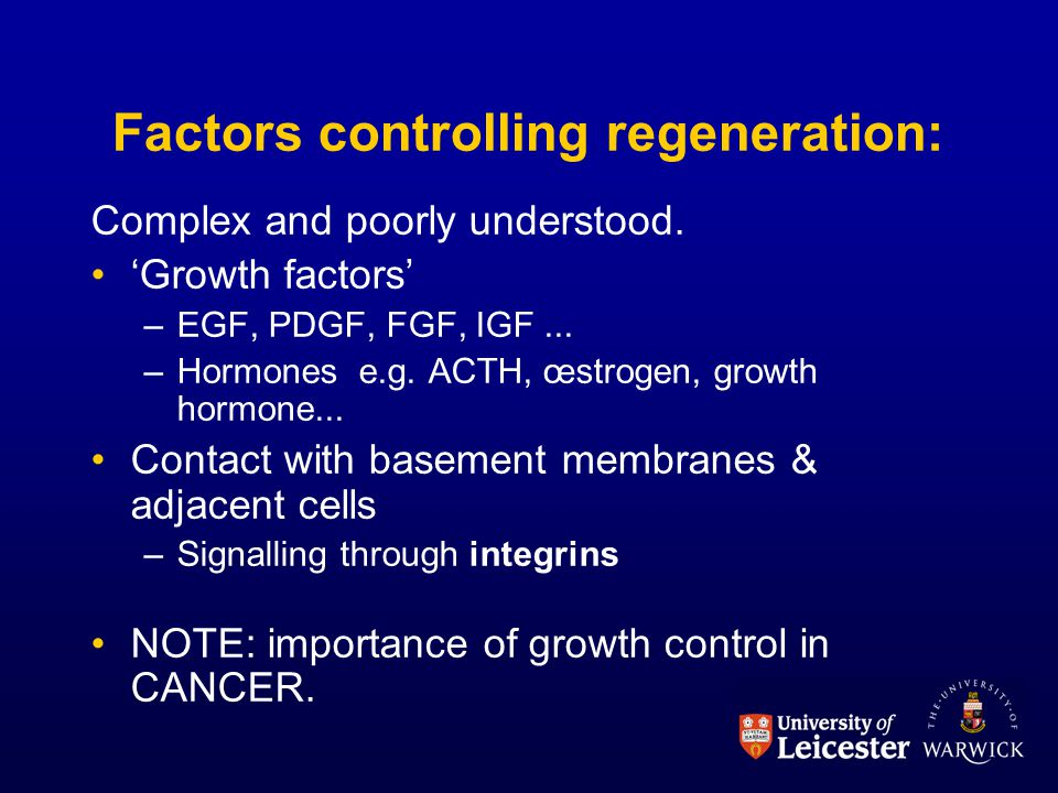 Factors controlling regeneration: Complex and poorly understood.
