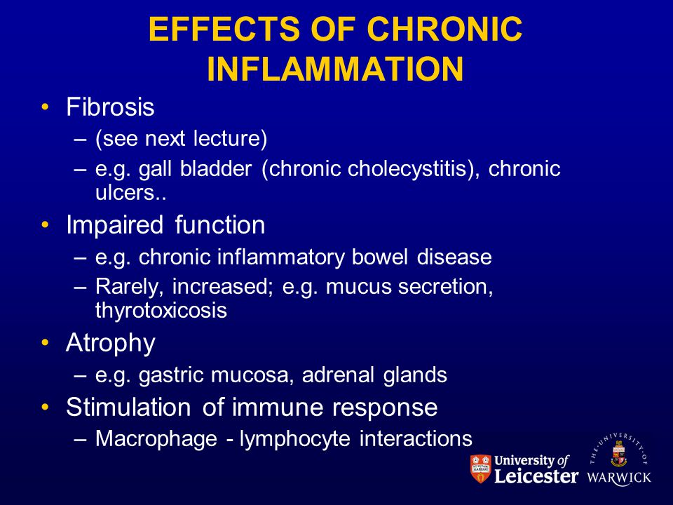 EFFECTS OF CHRONIC INFLAMMATION Fibrosis –(see next lecture) –e.g. gall bladder (chronic cholecystitis), chronic ulcers.. Impaired function –e.g. chro