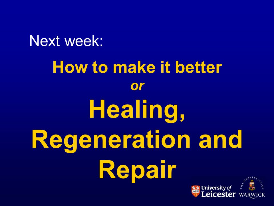 How to make it better or Healing, Regeneration and Repair Next week: