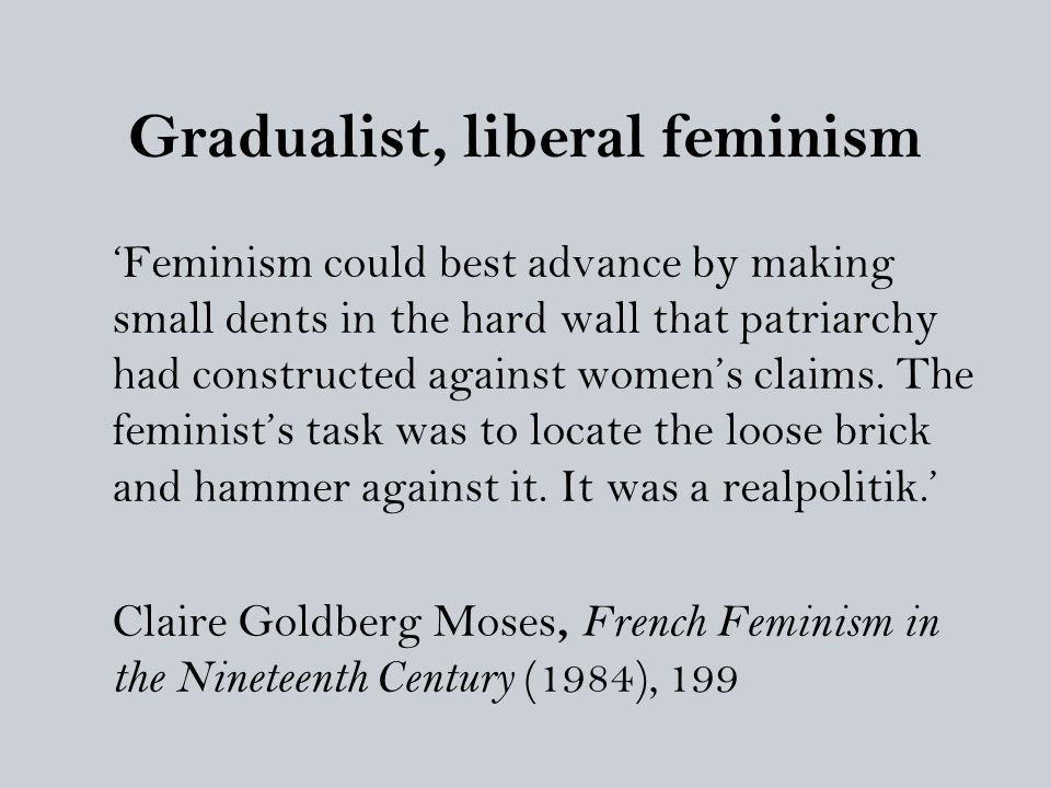 Gradualist, liberal feminism 'Feminism could best advance by making small dents in the hard wall that patriarchy had constructed against women's claim
