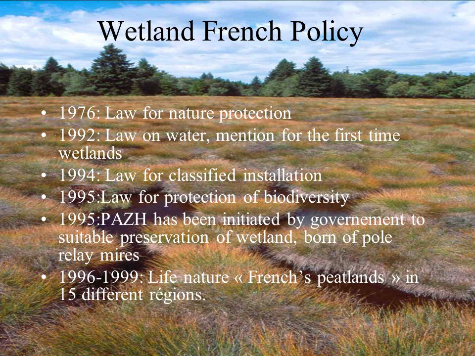 Wetland French Policy 1976: Law for nature protection 1992: Law on water, mention for the first time wetlands 1994: Law for classified installation 19