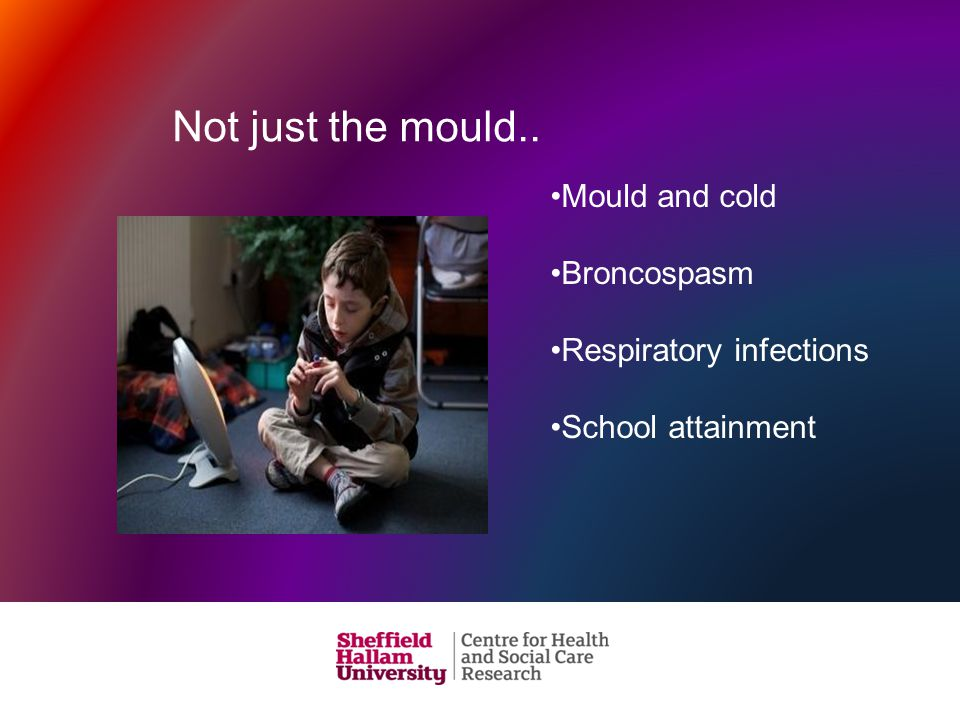 Not just the mould.. Mould and cold Broncospasm Respiratory infections School attainment