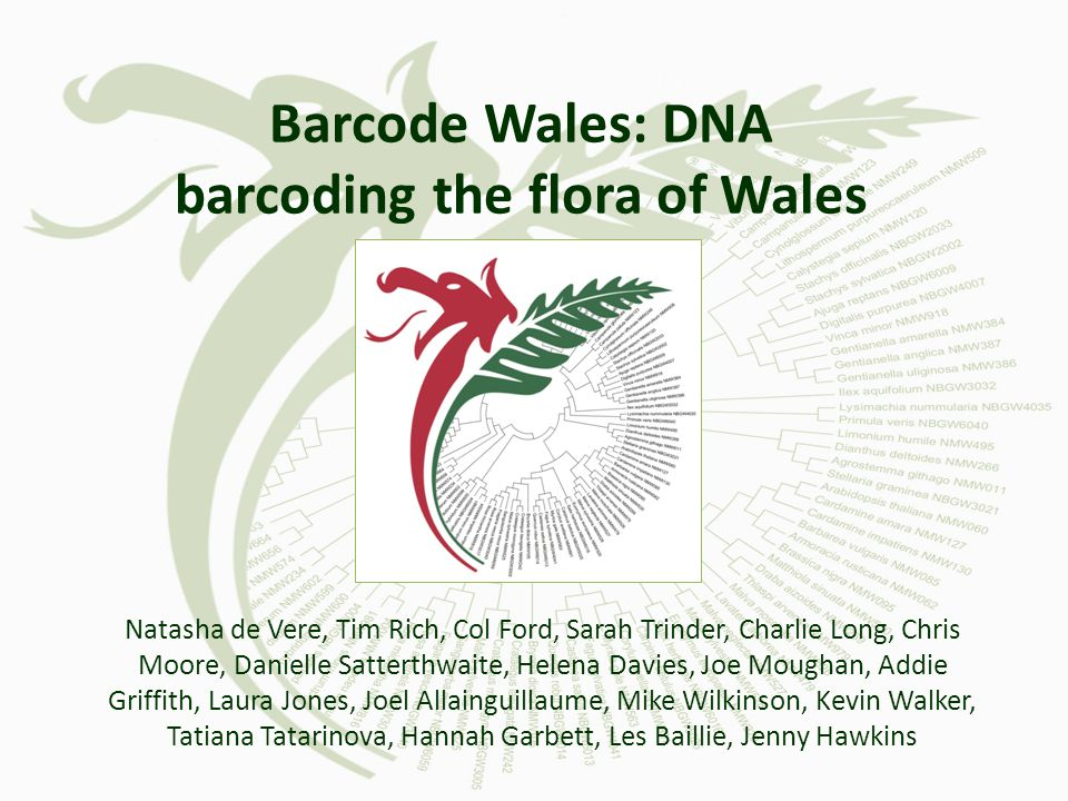 Barcode Wales: DNA barcoding the flora of Wales Natasha de Vere, Tim Rich, Col Ford, Sarah Trinder, Charlie Long, Chris Moore, Danielle Satterthwaite, Helena Davies, Joe Moughan, Addie Griffith, Laura Jones, Joel Allainguillaume, Mike Wilkinson, Kevin Walker, Tatiana Tatarinova, Hannah Garbett, Les Baillie, Jenny Hawkins