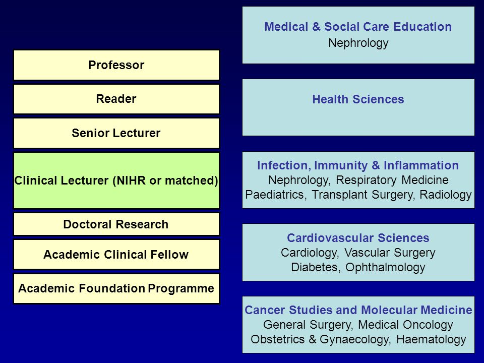 Health Sciences Infection, Immunity & Inflammation Nephrology, Respiratory Medicine Paediatrics, Transplant Surgery, Radiology Cardiovascular Sciences Cardiology, Vascular Surgery Diabetes, Ophthalmology Cancer Studies and Molecular Medicine General Surgery, Medical Oncology Obstetrics & Gynaecology, Haematology Medical & Social Care Education Nephrology Academic Foundation Programme Academic Clinical Fellow Doctoral Research Clinical Lecturer (NIHR or matched) Senior Lecturer Reader Professor