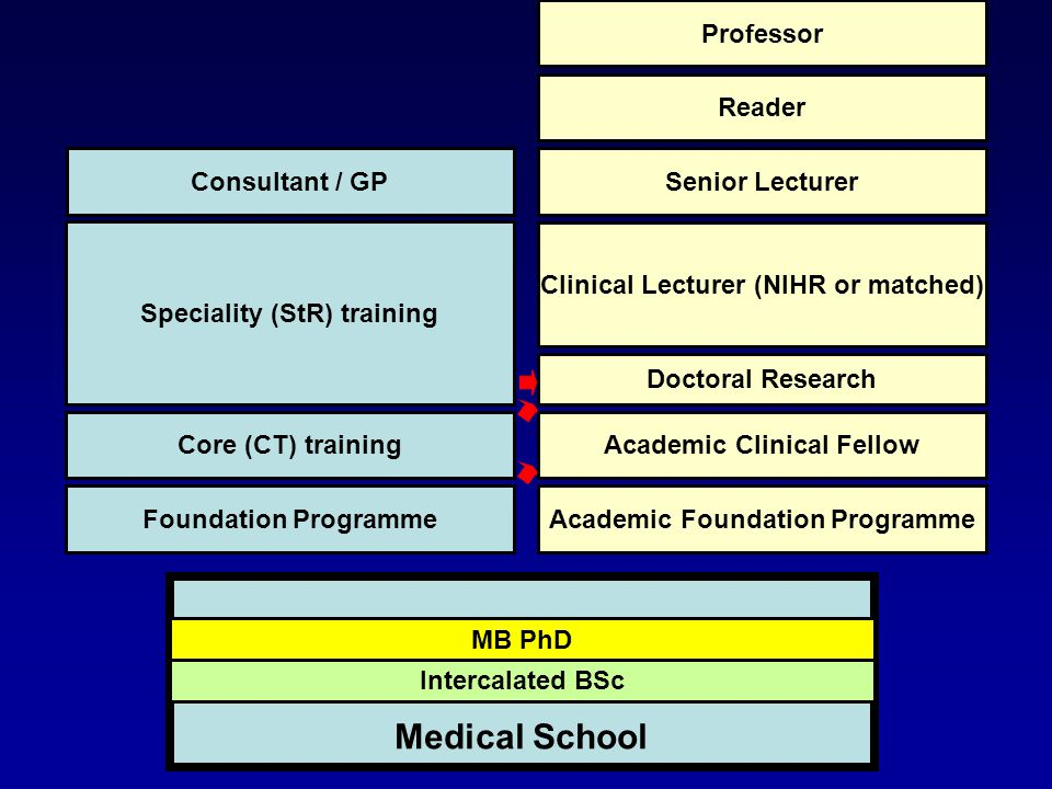 Intercalated BSc MB PhD Medical School Foundation Programme Core (CT) training Speciality (StR) training Consultant / GP Academic Foundation Programme Academic Clinical Fellow Doctoral Research Clinical Lecturer (NIHR or matched) Senior Lecturer Reader Professor