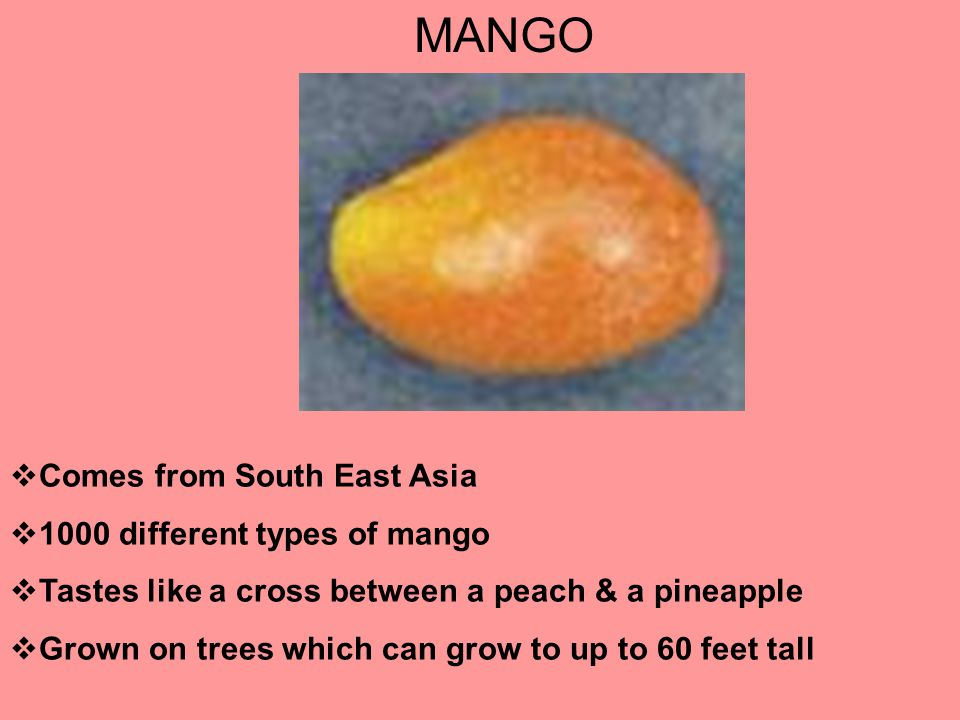 MANGO  Comes from South East Asia  1000 different types of mango  Tastes like a cross between a peach & a pineapple  Grown on trees which can grow