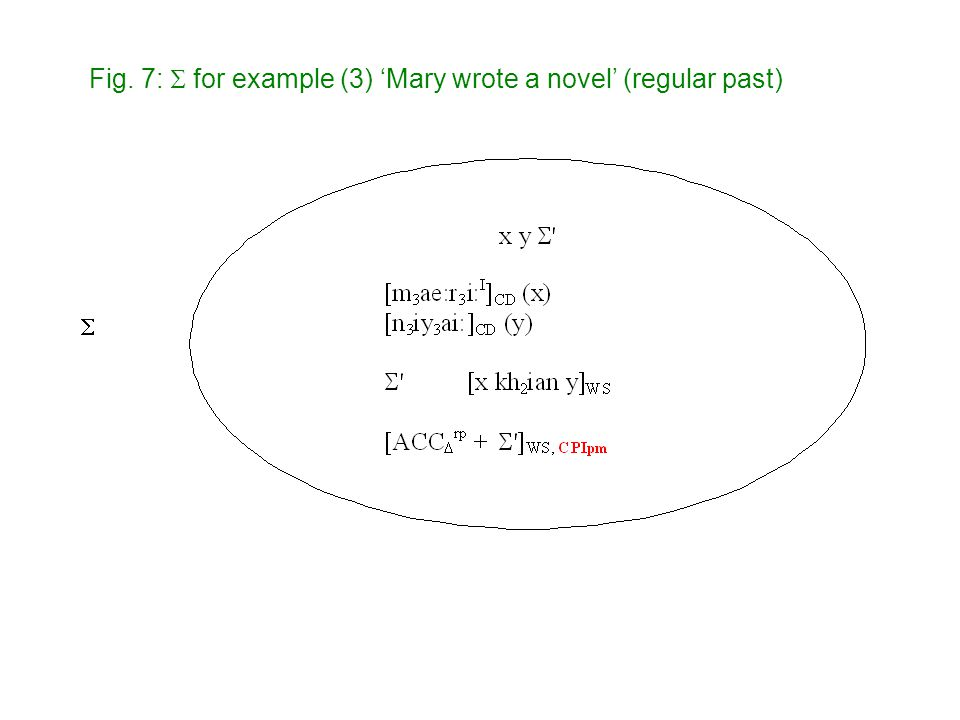  Fig. 7:  for example (3) 'Mary wrote a novel' (regular past)