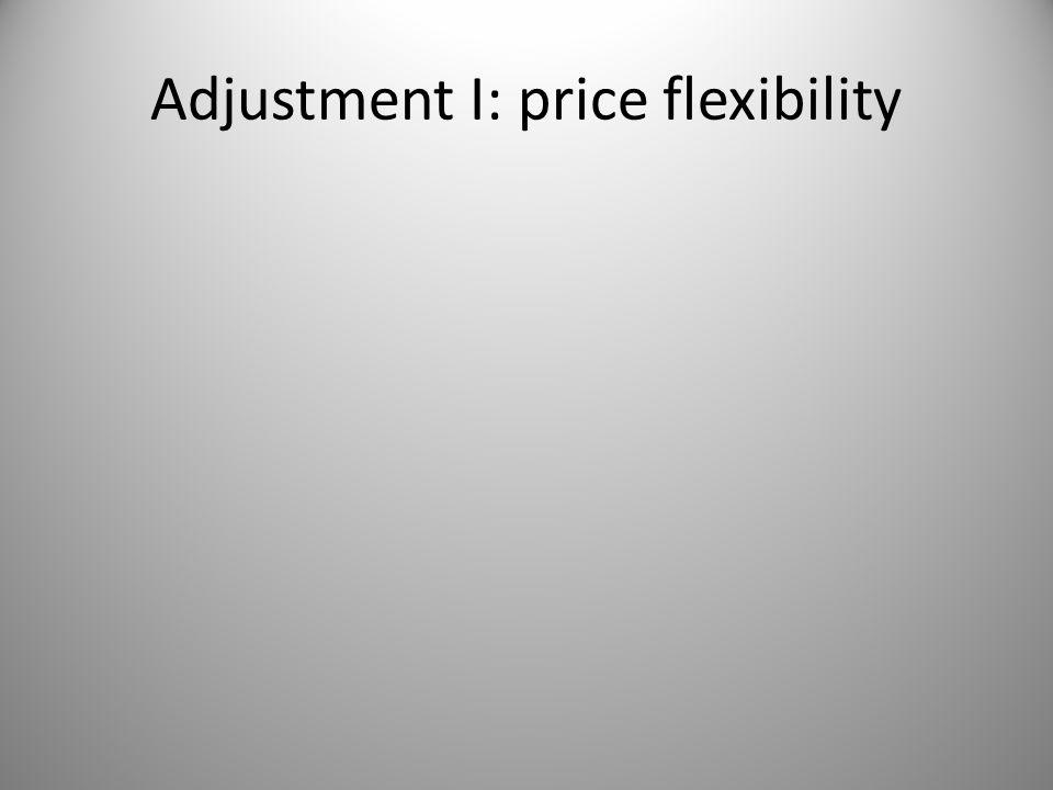 Adjustment I: price flexibility