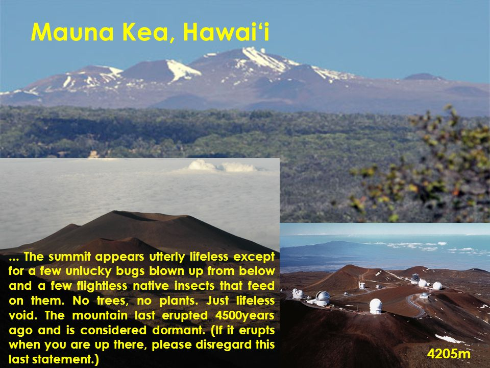 Mauna Kea, Hawai'i... The summit appears utterly lifeless except for a few unlucky bugs blown up from below and a few flightless native insects that f