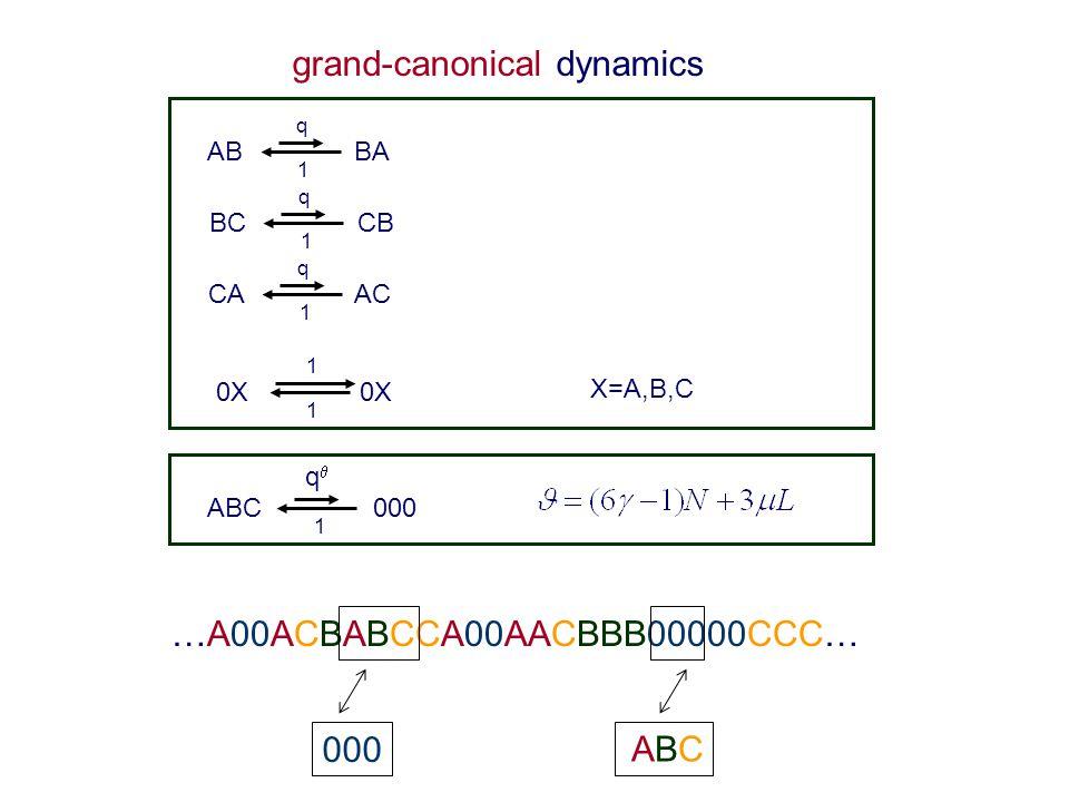 grand-canonical dynamics AB BA 1 q BC CB 1 q CA AC 1 q 0X 1 1 ABC 000 1 qq X=A,B,C …A00ACBABCCA00AACBBB00000CCC… ABCABC 000