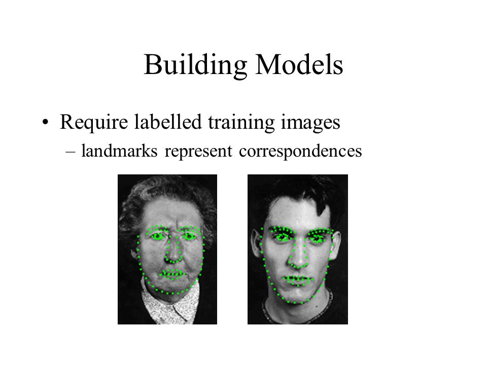 Building Models Require labelled training images –landmarks represent correspondences