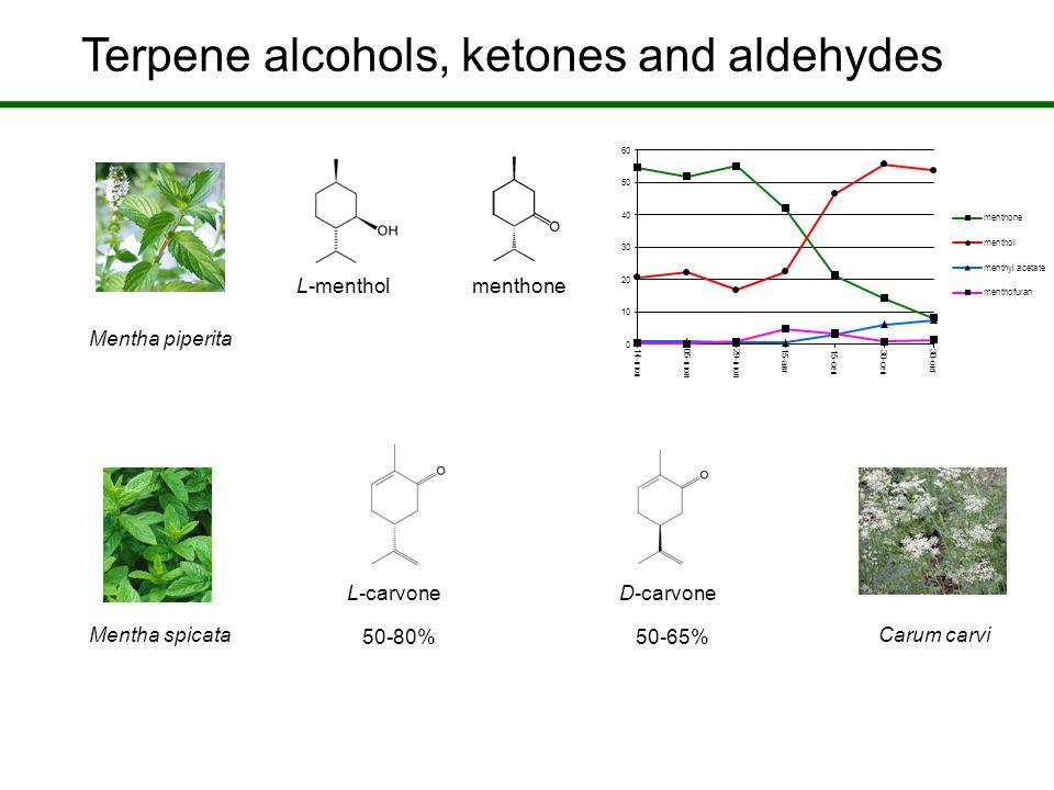 Terpene alcohols, ketones and aldehydes L-menthol menthone L-carvone D-carvone Mentha piperita Mentha spicataCarum carvi 50-80% 50-65%