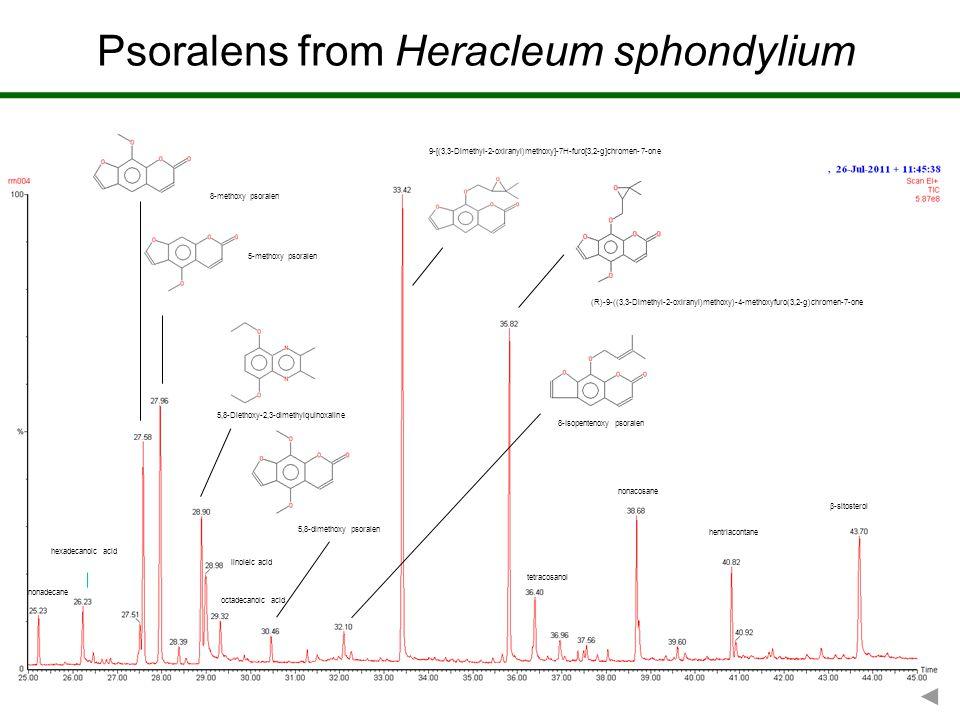 Psoralens from Heracleum sphondylium 5,8-Diethoxy-2,3-dimethylquinoxaline hentriacontane nonacosane  -sitosterol tetracosanol nonadecane hexadecanoic