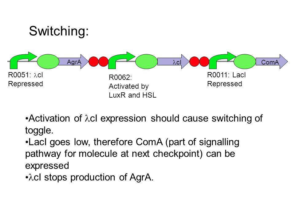 Checkpoint 2: ComP ComX ComAComA - P Attractant R0011: LacI Repressed LuxM R0051 cI repressed Repellant On arrival: LacI = Low, cI = high Promotor activated by LuxO - P (present when LuxM is low) Q00400: Tet inverter LacR