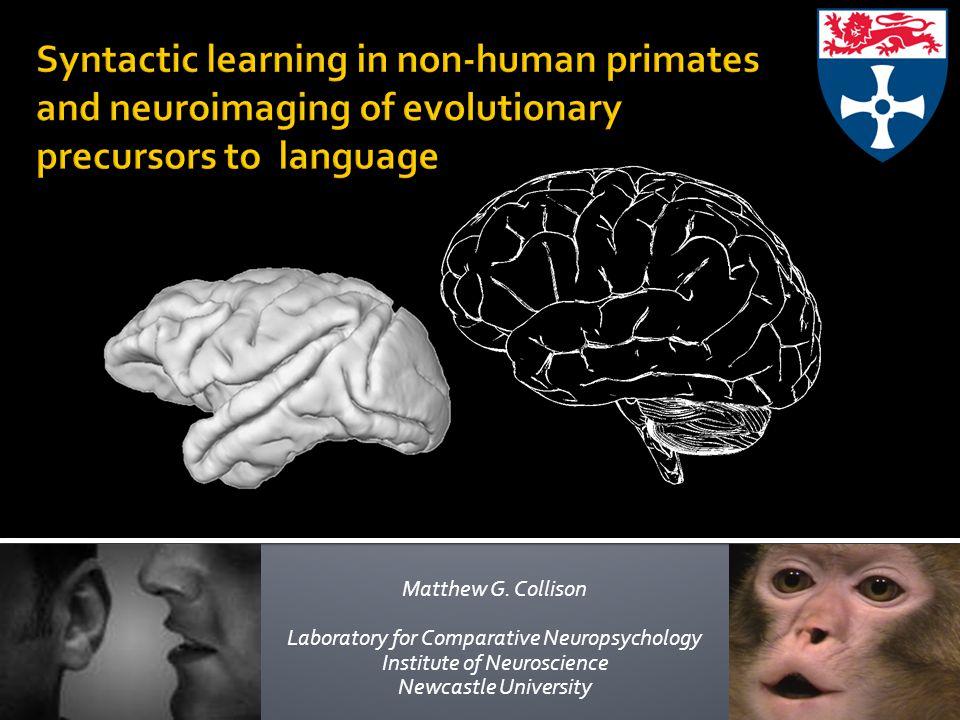 Matthew G. Collison Laboratory for Comparative Neuropsychology Institute of Neuroscience Newcastle University