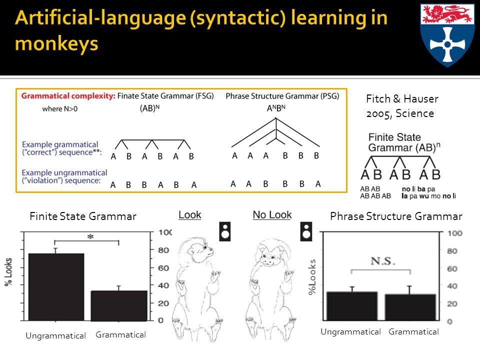 Grammatical Ungrammatical GrammaticalUngrammatical Fitch & Hauser 2005, Science Finite State GrammarPhrase Structure Grammar %Looks