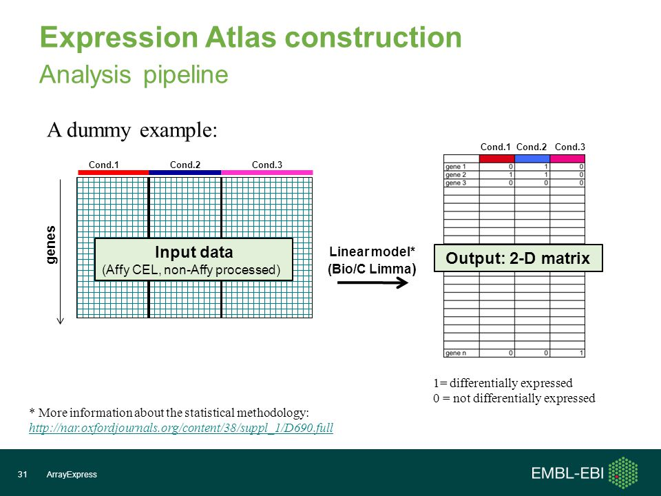 Expression Atlas construction Analysis pipeline ArrayExpress31 genes Cond.1Cond.2Cond.3 Linear model* (Bio/C Limma ) Cond.1 Cond.2 Cond.3 Input data (Affy CEL, non-Affy processed) 1= differentially expressed 0 = not differentially expressed A dummy example: Output: 2-D matrix * More information about the statistical methodology: