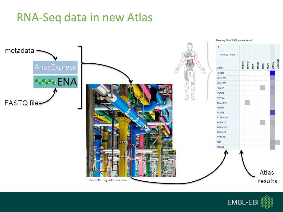 RNA-Seq data in new Atlas FASTQ files metadata Photo © Google/Connie Zhou Atlas results