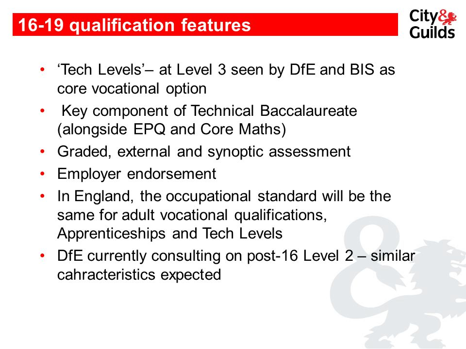 16-19 qualification features 'Tech Levels'– at Level 3 seen by DfE and BIS as core vocational option Key component of Technical Baccalaureate (alongsi
