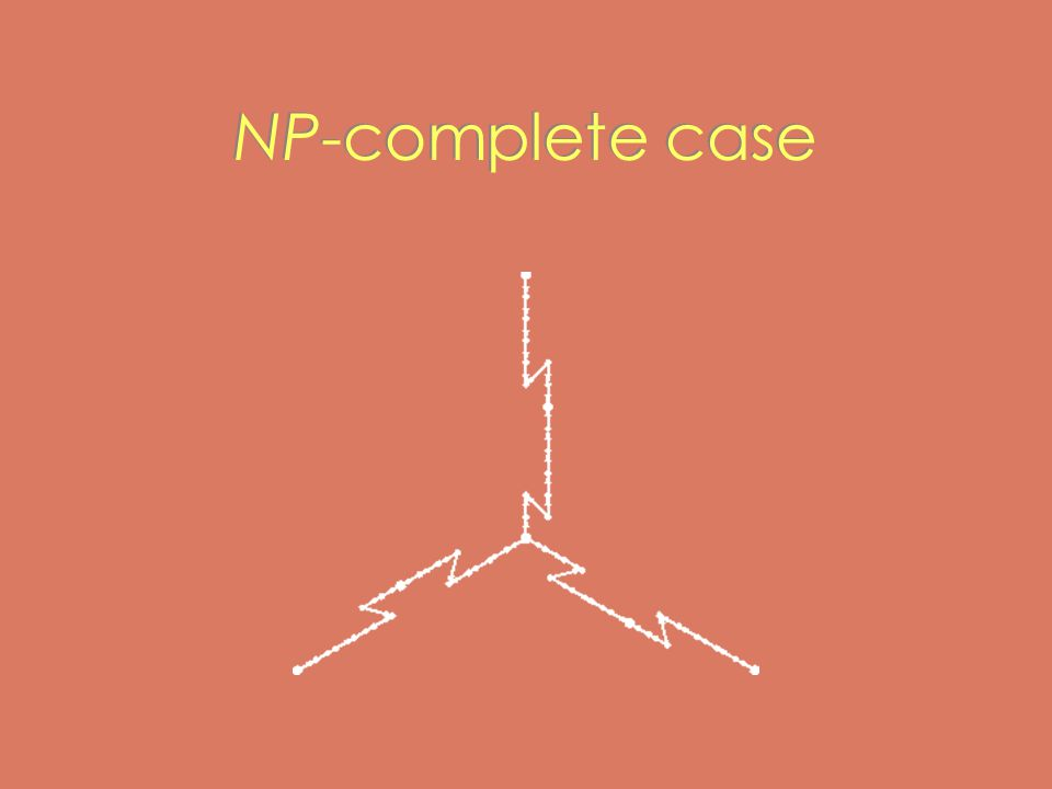 NP-complete case