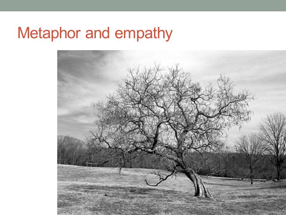 Metaphor and empathy
