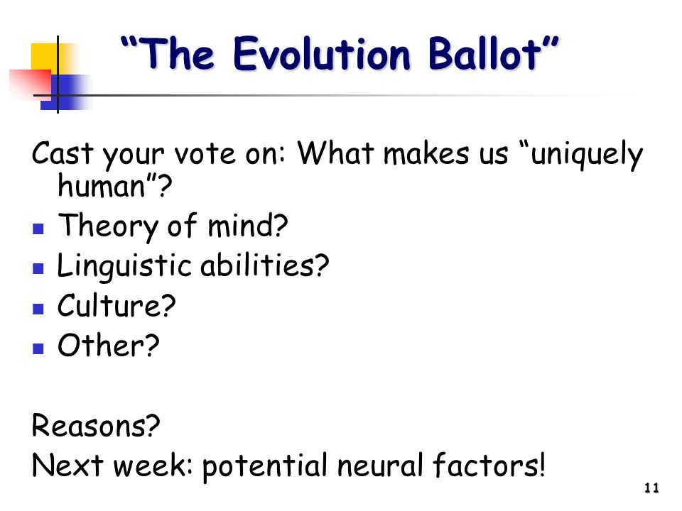 11 Cast your vote on: What makes us uniquely human .