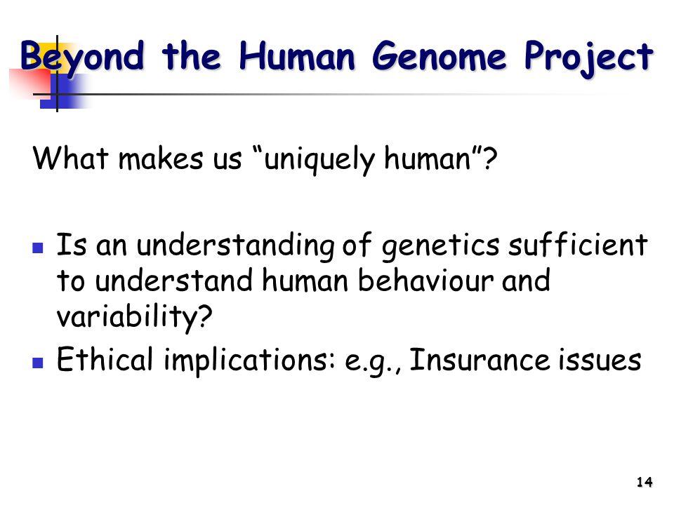 14 What makes us uniquely human .