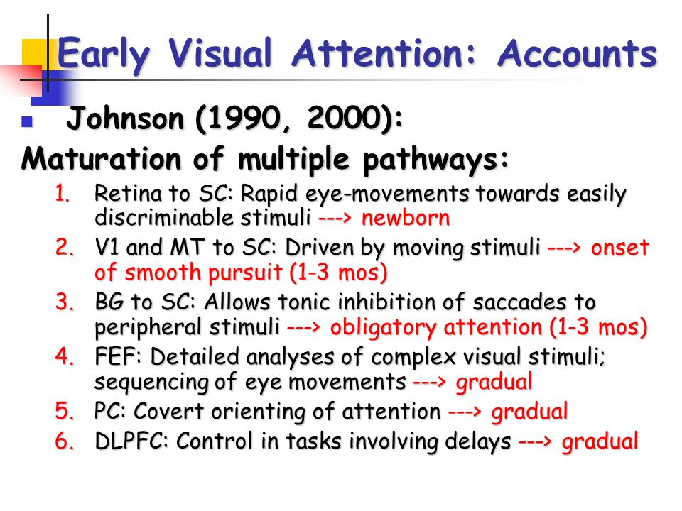 Johnson (1990, 2000): Johnson (1990, 2000): Maturation of multiple pathways: 1.Retina to SC: Rapid eye-movements towards easily discriminable stimuli ---> newborn 2.V1 and MT to SC: Driven by moving stimuli ---> onset of smooth pursuit (1-3 mos) 3.BG to SC: Allows tonic inhibition of saccades to peripheral stimuli ---> obligatory attention (1-3 mos) 4.FEF: Detailed analyses of complex visual stimuli; sequencing of eye movements ---> gradual 5.PC: Covert orienting of attention ---> gradual 6.DLPFC: Control in tasks involving delays ---> gradual Early Visual Attention: Accounts