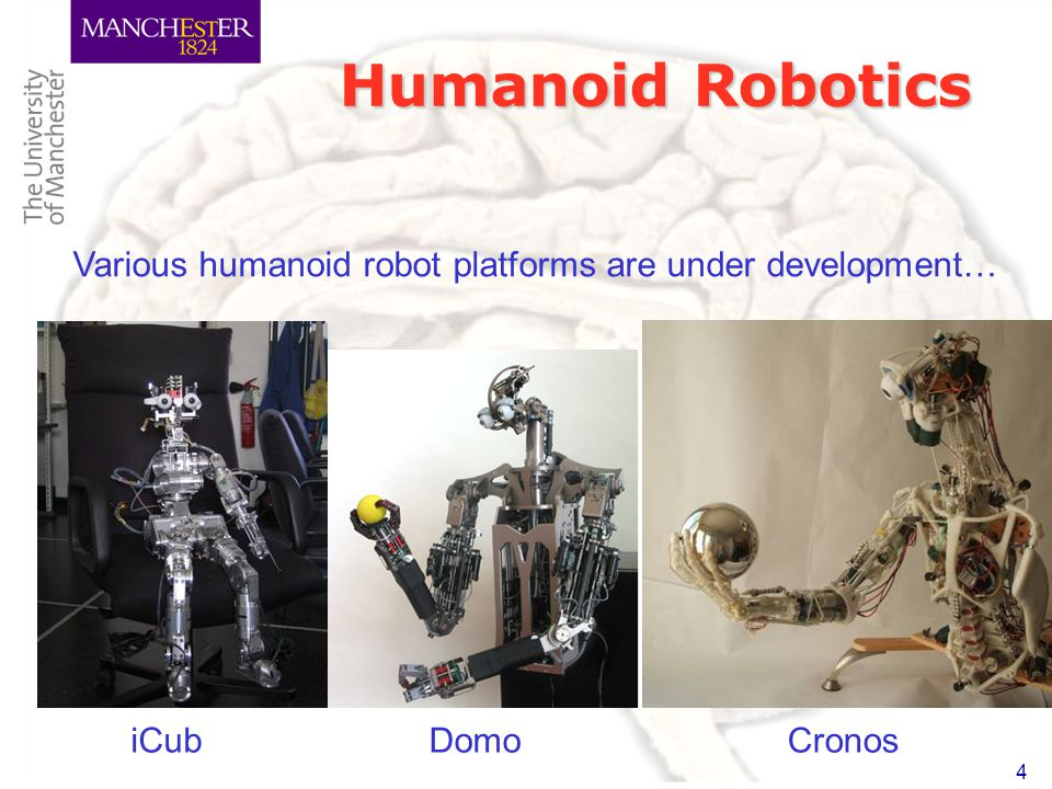 4 Humanoid Robotics iCubCronos Various humanoid robot platforms are under development… Domo