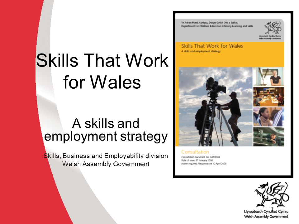12 STWfW key principles Employers must have real influence Shared responsibility between the Assembly Government, employers and individuals Integration of skills, employment and business support