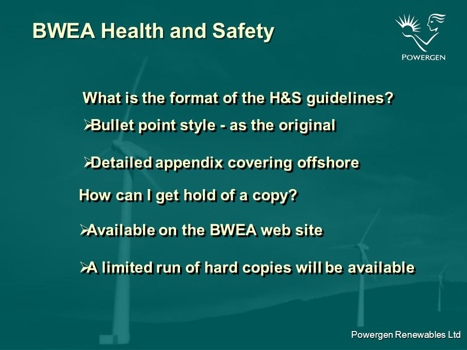 Powergen Renewables Ltd BWEA Health and Safety What the H&S guidelines do not give you.