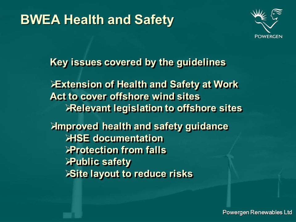 Powergen Renewables Ltd BWEA Health and Safety What is the format of the H&S guidelines.