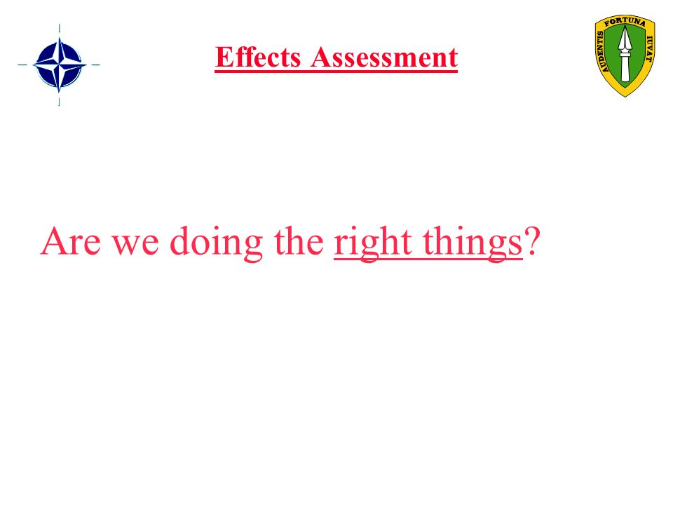 Effects Assessment Are we doing the right things