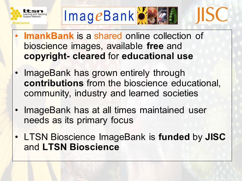 ImankBank is a shared online collection of bioscience images, available free and copyright- cleared for educational use ImageBank has grown entirely through contributions from the bioscience educational, community, industry and learned societies ImageBank has at all times maintained user needs as its primary focus LTSN Bioscience ImageBank is funded by JISC and LTSN Bioscience