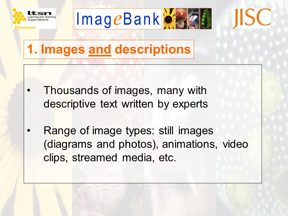 Thousands of images, many with descriptive text written by experts Range of image types: still images (diagrams and photos), animations, video clips, streamed media, etc.