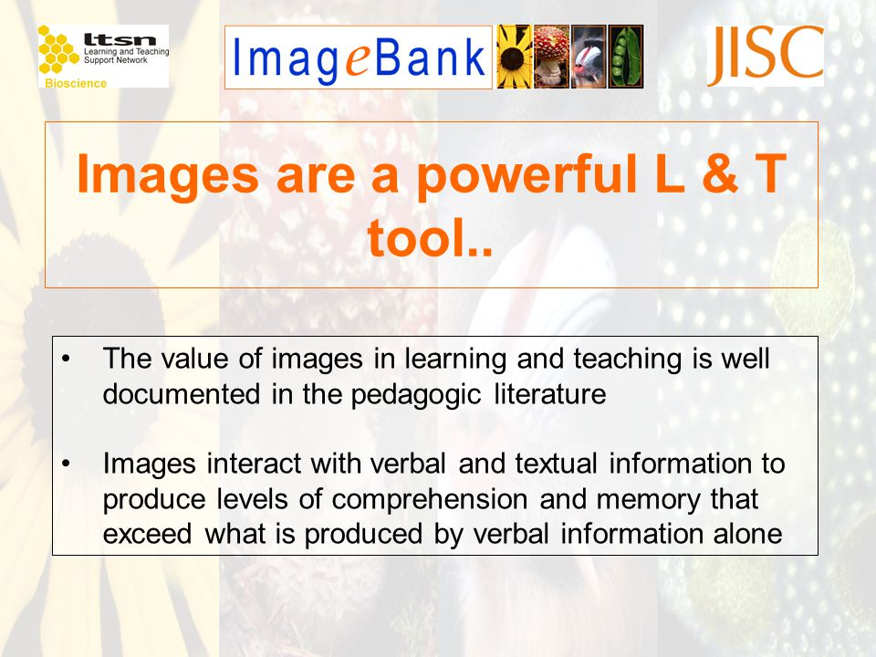 Images are a powerful L & T tool.. The value of images in learning and teaching is well documented in the pedagogic literature Images interact with ve