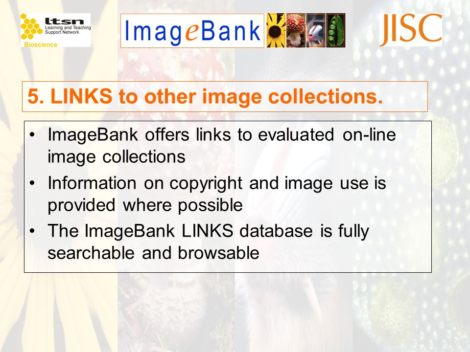 5. LINKS to other image collections. ImageBank offers links to evaluated on-line image collections Information on copyright and image use is provided