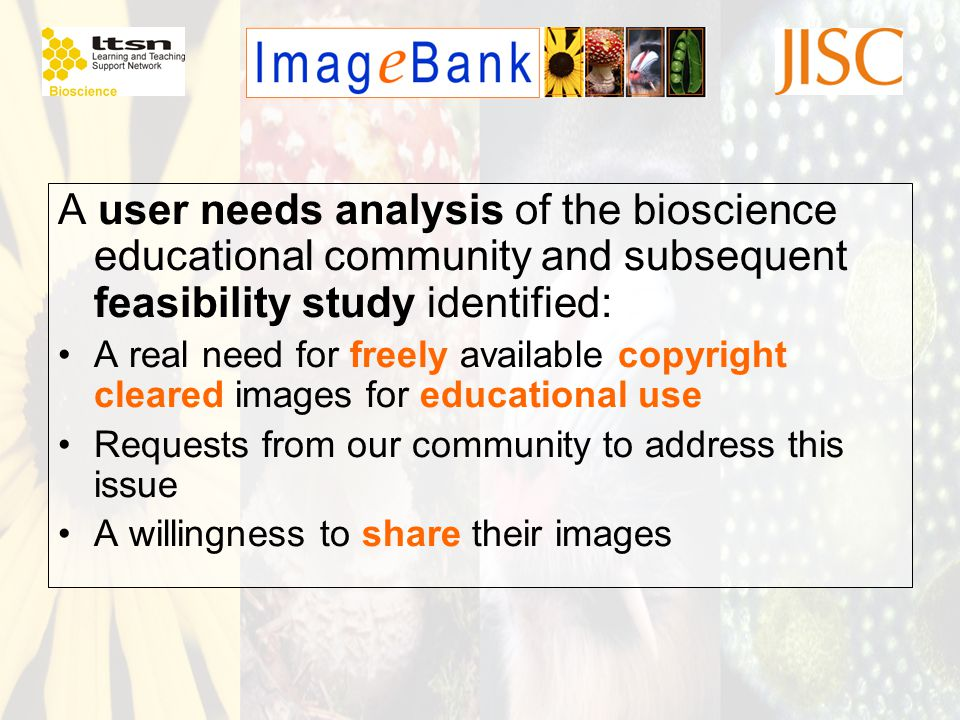 A user needs analysis of the bioscience educational community and subsequent feasibility study identified: A real need for freely available copyright