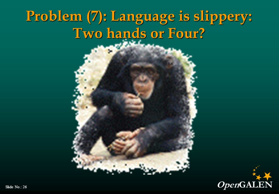 OpenGALEN Slide No.: 26 Problem (7): Language is slippery: Two hands or Four