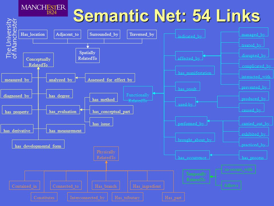 Semantic Net: 54 Links Spatially RelatedTo Has_locationAdjacent_toSurrounded_byTraversed_by Physically RelatedTo Has_partConstitutes Contained_inConnected_to Interconnected_by Has_branch Has_tributary Has_ingredient Temporally RelatedTo follows co-occurs_with brought_about_by has_manifestation indicated_by has_result Functionally RelatedTo affected_by managed_by treated_by disrupted_by complicated_by interacted_with prevented_by used-by produced_by caused_by performed_bycarried_out_by exhibited_by practiced_by has_occurrencehas_process Conceptually RelatedTo has_degreediagnosed_by has_property has_derivative has_developmental_form has_measurement measured_by has_evaluation has_method has_conceptual_part has_issue analyzed_byAssessed_for_effect_by