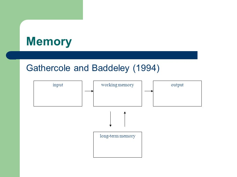 Memory Gathercole and Baddeley (1994) working memoryinputoutput long-term memory